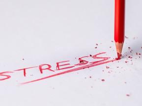 International Stress Awareness Week 4-8 November 2019