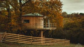 Ty'r Onnen Treehouse - Tal-Y-Bont, Wales