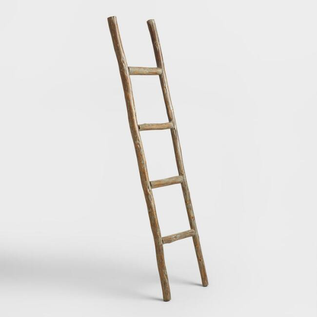 World Market | Decorative Eucalyptus Ladder