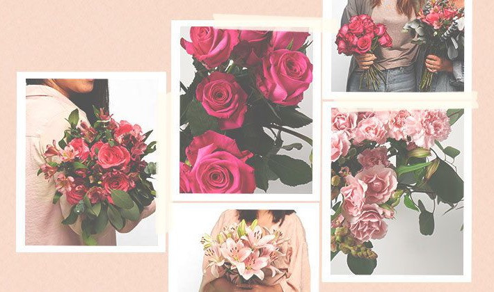 The Bouqs Co. | The Pink Collection