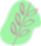 Whole Leaf Icon.png