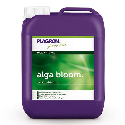 Plagron Dünger alga bloom 5ltr.