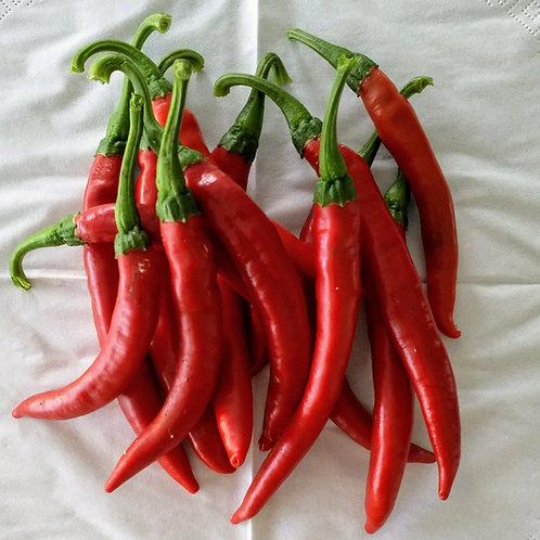 Chili-Samen Cayenne red - Schärfegrad 6