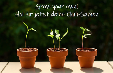 Chili-Samen kaufen_Peperonchili.jpg
