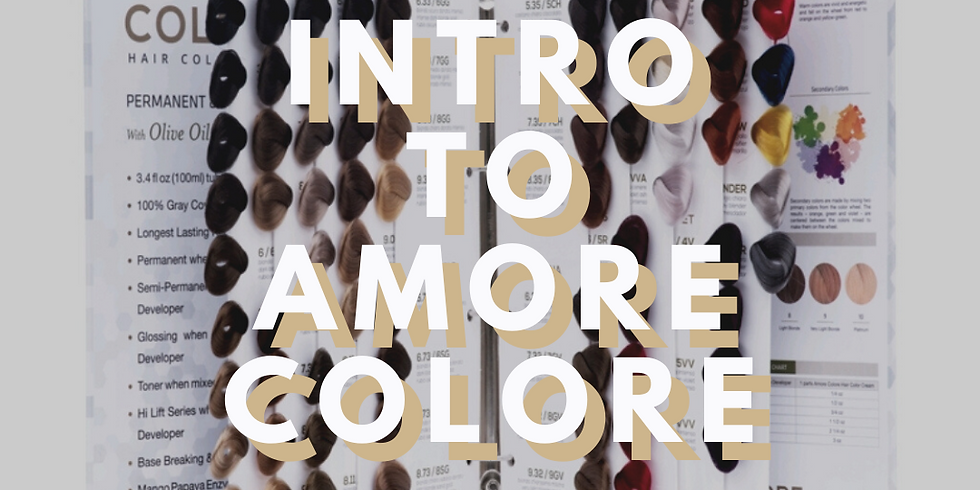 Intro Color Class to Amore Colore