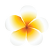 NANI STUDIO logo 092019_final2-02.png