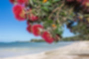 Snells Beach.jpg