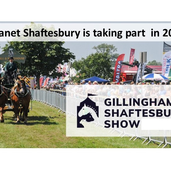 Gillingham & Shaftesbury Show