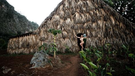 Cuba Tobacco Barn - Vassanta (2016)