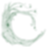 ChineseMedicinePTBO_Icon_Green-01.png