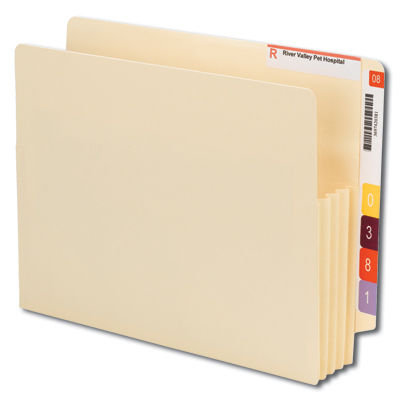 Carpeta de expansión con ceja reforzada e convertible papel manila