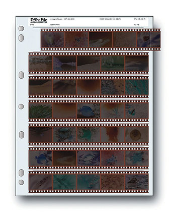 35-7B Página para negativos 35mm