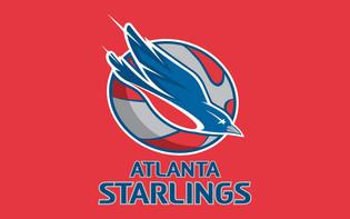 starlings ID.jpg