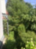 Дача в  Домодедово 100кв/м брус, участк 6 соток