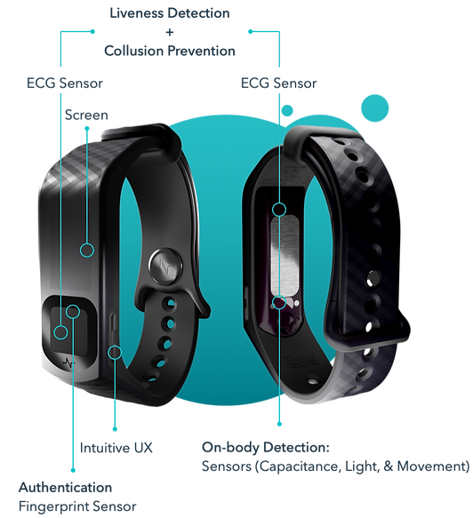 Front and back angle renderings of Nymi Band in front of an artistic blue circle design with callout lines for various features.