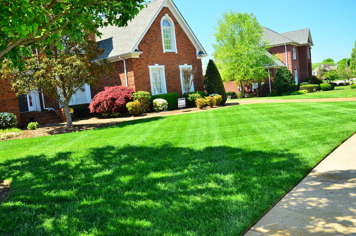 Keep Off the Grass! No Seriously, weed killers can cause cancer…