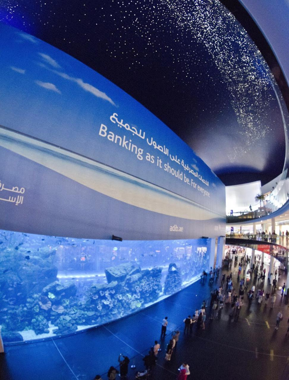 Hire a driver to visit Dubai Aquarium and Underwater Zoo