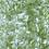 Thumbnail: Quarry - Lime green