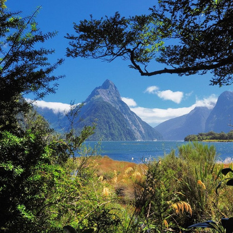 Backyard Travelling: Southland Discovery
