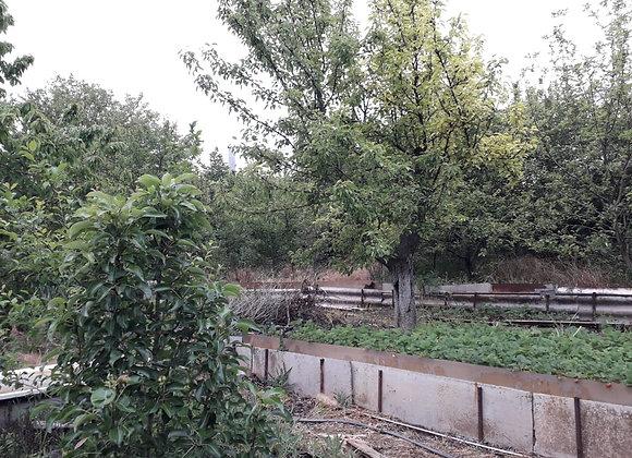 Земельный участок 5,5 соток мкр. Советский