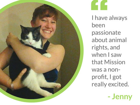 CSS Appreciation Week - Meet Jenny!