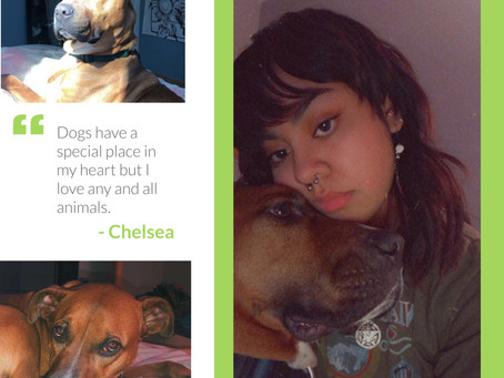 CSS Appreciation Week - Meet Chelsea!