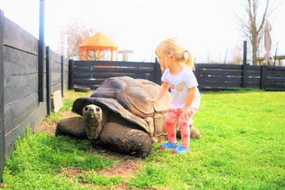 Leesburg Animal Park