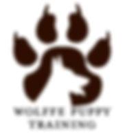 WPT logo.jpg