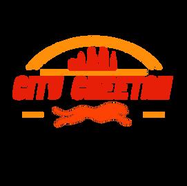 City Cheetah LLC