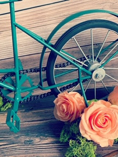 BYCICLE AND ROSES.JPG