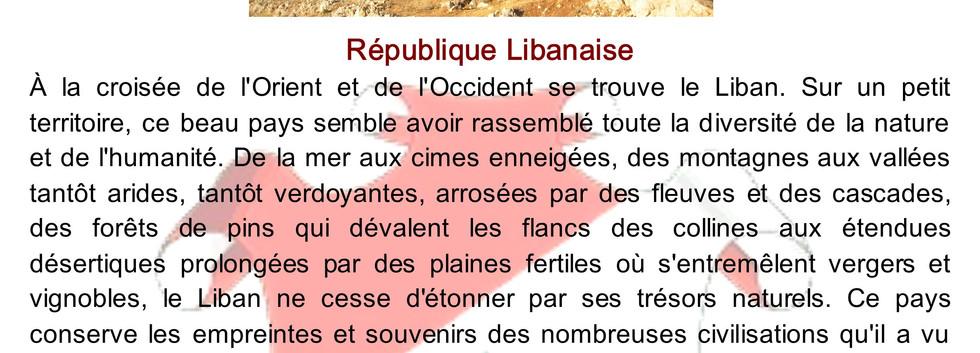 Plaquette liban 1 2009.jpg