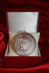 Medaille d'argent FIT.JPG