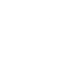 FS logo circular_bco.png