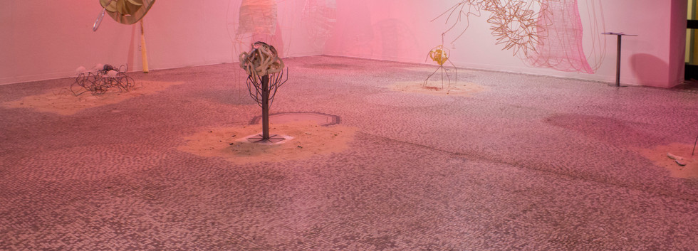 Colocated Current Installation View