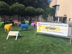 Pop Sheep in Lienz, 2017