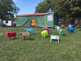 Pop Sheep, 2017