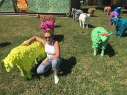 Pop Sheep, 2017