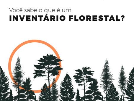 O que é um inventário florestal?