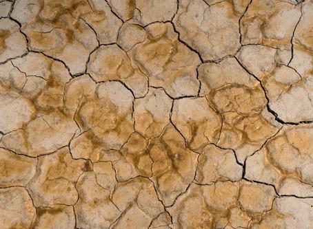 O que é e como fazer a caracterização do solo?