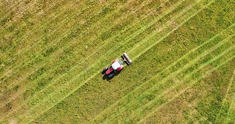 agricultura_Prancheta 1_Prancheta 1.png