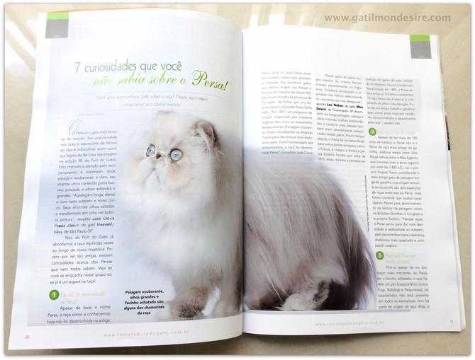 Entrevista com Gatil Mon Desiré!