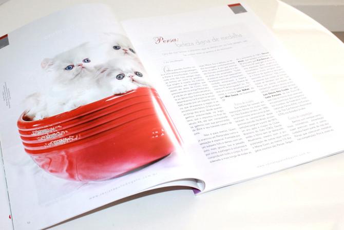 Entrevista com Gatil Mon Desiré na Revista Pulo do Gato