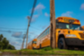 2529-School-bus