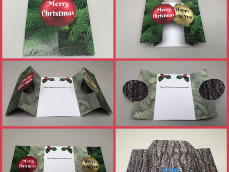 Envision3 Holiday Card