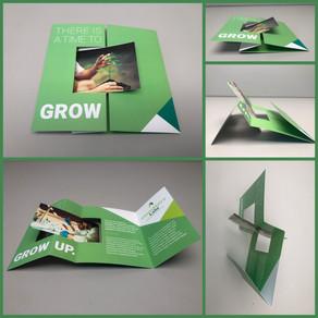 Cannabis Brochure