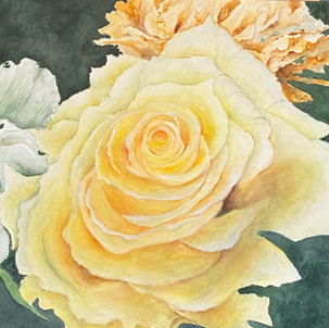 """""""The Yellow Rose """""""