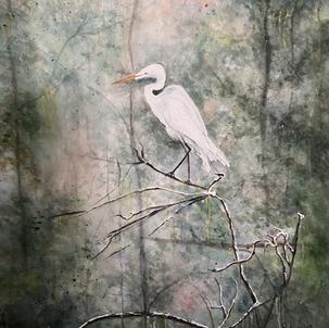 """Snowy Egret...On Watch"""