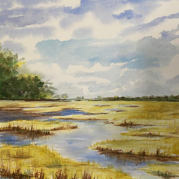 """The Marsh"""