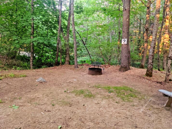 Site 02