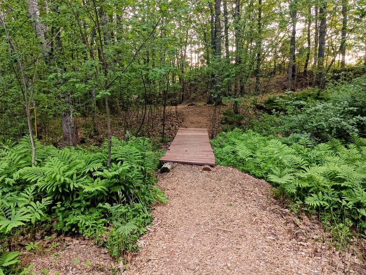 Site 2 - bridge to 2 & 3
